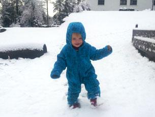 winterland-blog