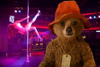 paddington-bear-blog